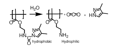 deblocking of the isocyanate side groups under the influence of water.