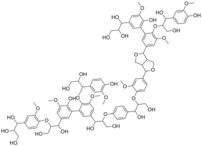 Part of a lignin structure